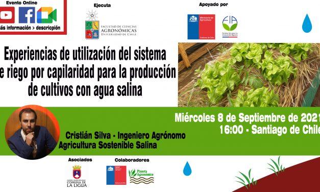 Experiencias de utilización del sistema de riego por capilaridad para la producción de cultivos con agua salina